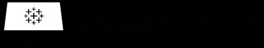 logo-dataschool